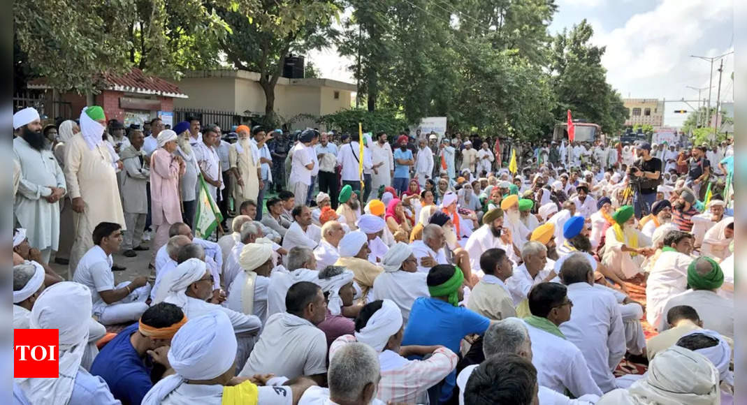 Govt announces early MSP for rabi crops in bid to calm farm protests   India News - Times of India