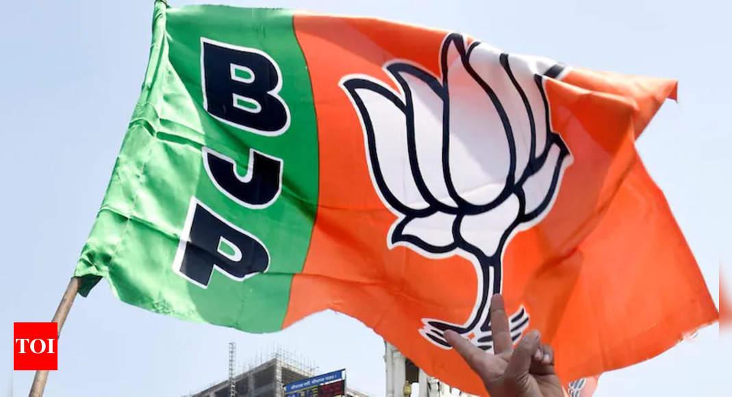 , Gujarat BJP heeds 'ab ki baar, Patidar CM' demand, The World Live Breaking News Coverage & Updates IN ENGLISH