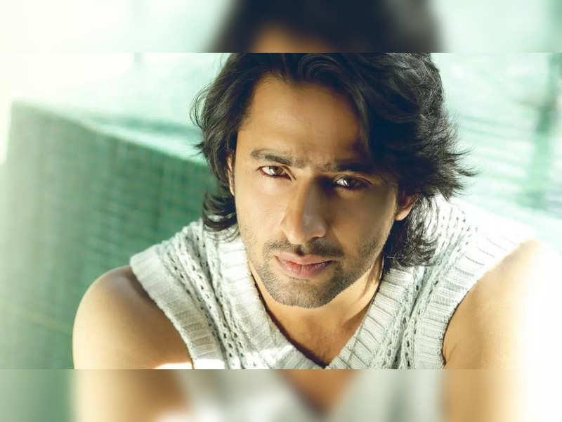 Shaheer Sheikh reveals he was jobless and only doing auditions for a year before Mahabharat