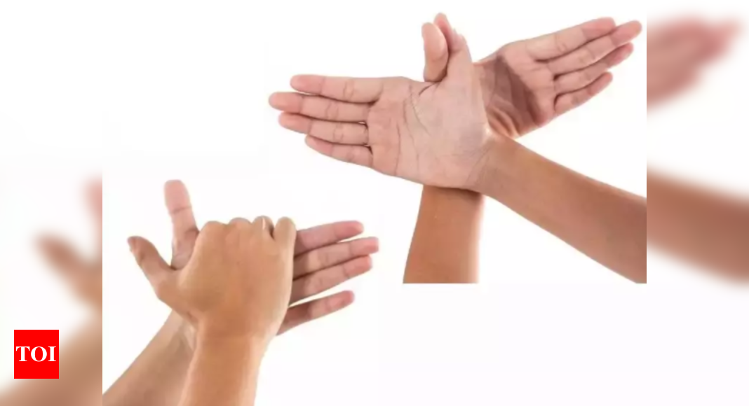 Realising the importance of Indian sign language dictionary