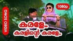Check Out Popular Malayalam Music Video Song 'Karale Karalinte' From Movie 'Udayanaanu Thaaram' Starring Sreenivasan And Meena