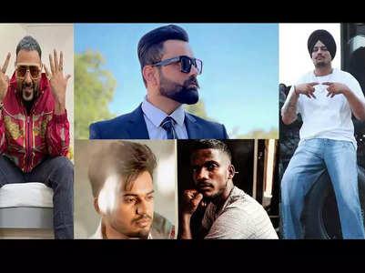 5 Punjabi stars who have engineering degree