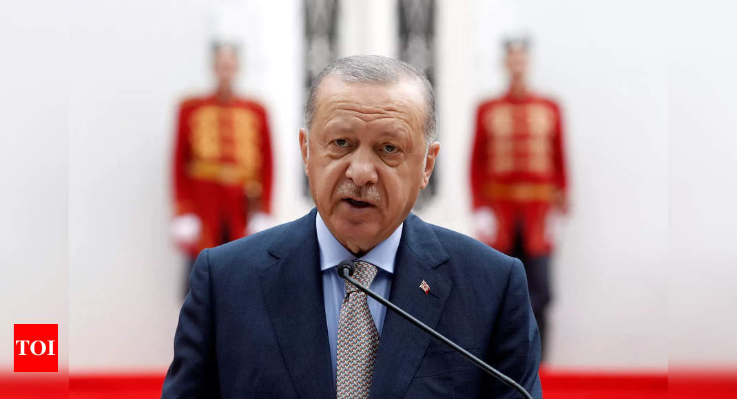 grey wolves: Will the grey wolves- Erdogan's long arm in the world-end up on EU and US terrorist list? – Times of India