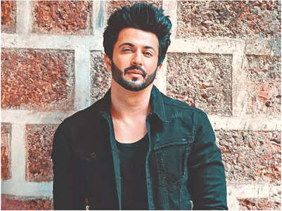 I shouldn't be slotted as TV actor: Dheeraj
