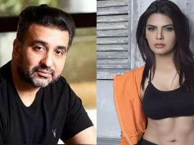 Gehana: Sherlyn dragged Raj into bold content