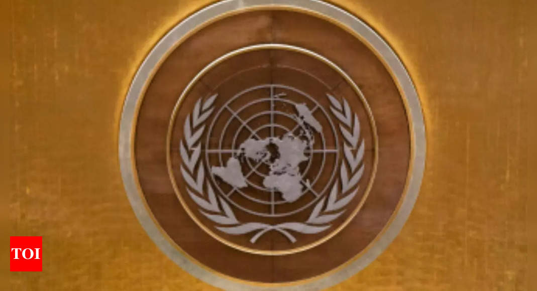 Afghanistan News: Afghanistan withdraws from General Assembly debate, UN says | World News – Times of India