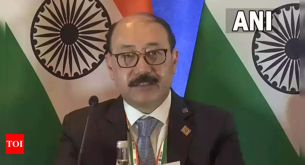 Pay closer attention to N-proliferation, India says at UNSC | India News – Times of India