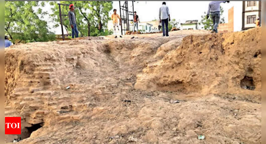 meerut:   2,000-yr-old Meerut find may lead to 'lost' Ashoka pillar site | India News – Times of India
