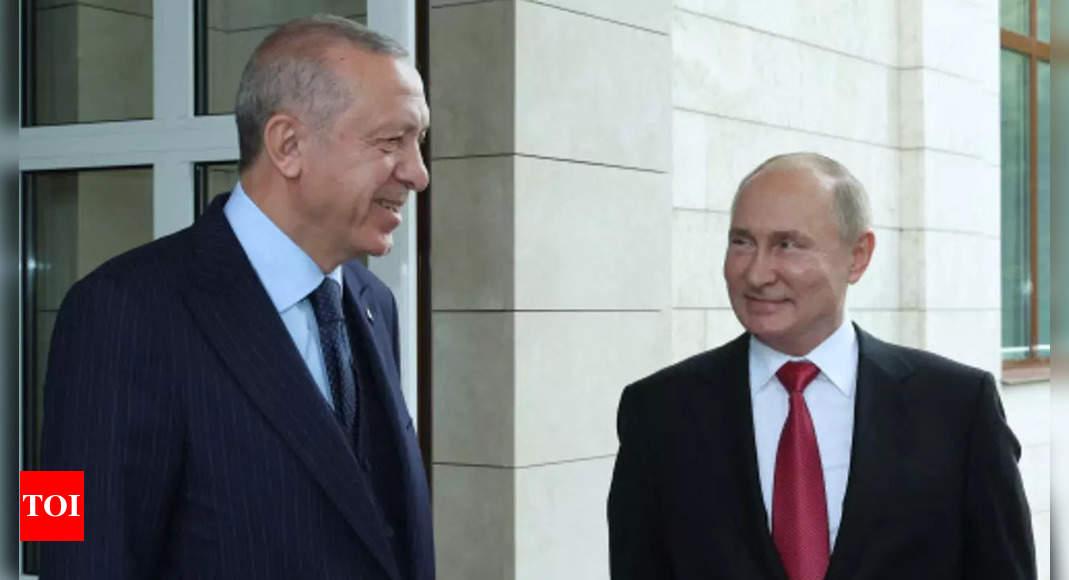 Erdogan, Putin discussed warplanes, submarines cooperation: Report thumbnail