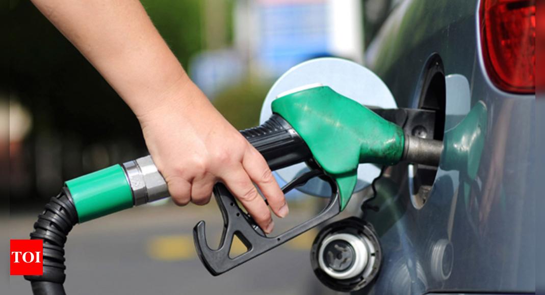 , Govt to make flex-fuel engines mandatory: Gadkari, The World Live Breaking News Coverage & Updates IN ENGLISH