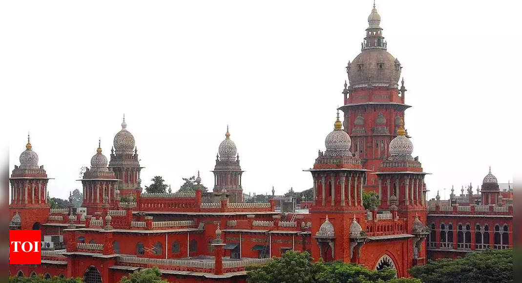 No more new statues in Tamil Nadu, shift existing ones to special parks, says Madras high court | Chennai News – Times of India