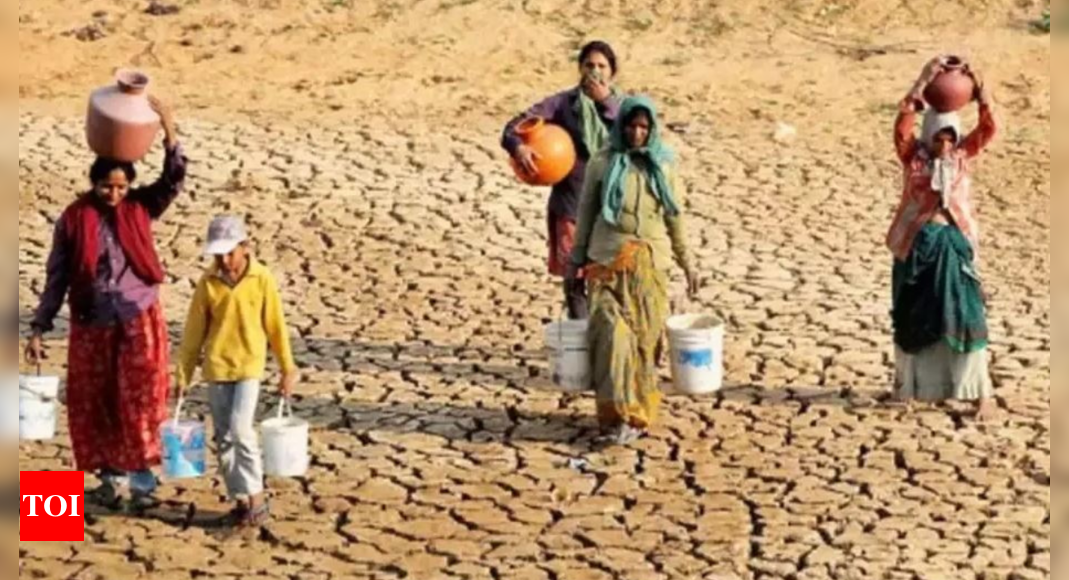 Climate refugee crisis beckons in India if water scarcity continues: 'Waterman' Rajendra Singh