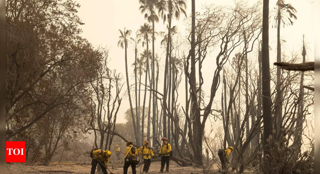 California firefighters, aircraft try to box in wildfire