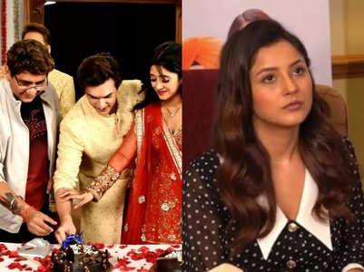 Mohsin Khan to Shehnaaz Gill; top news
