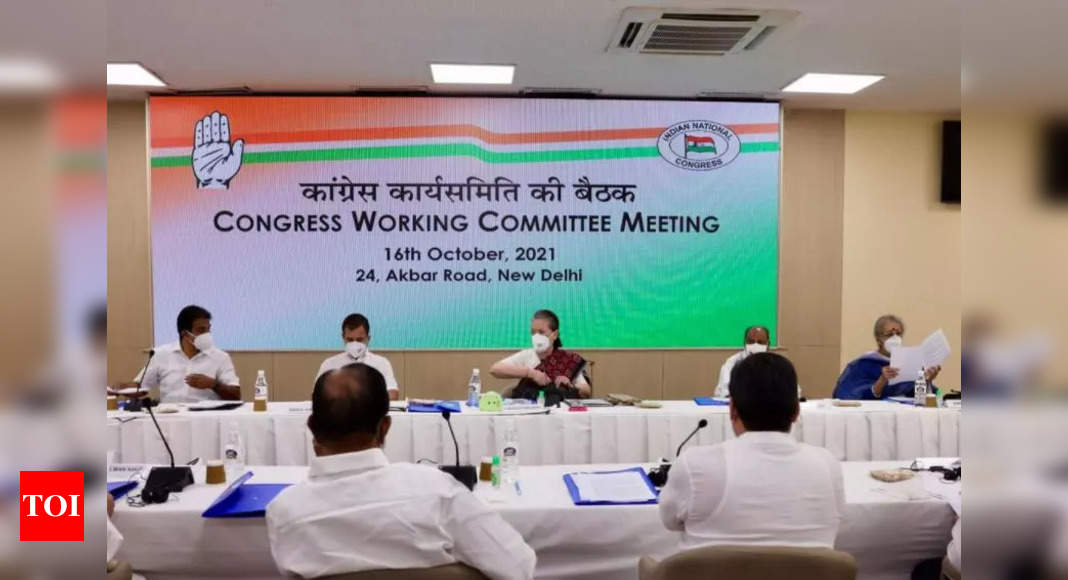 I am full-time, hands-on Congress president: Sonia Gandhi at key CWC meet