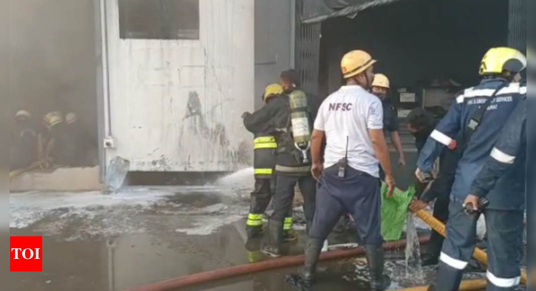 Fire breaks out at factory in Surat, 2 killed