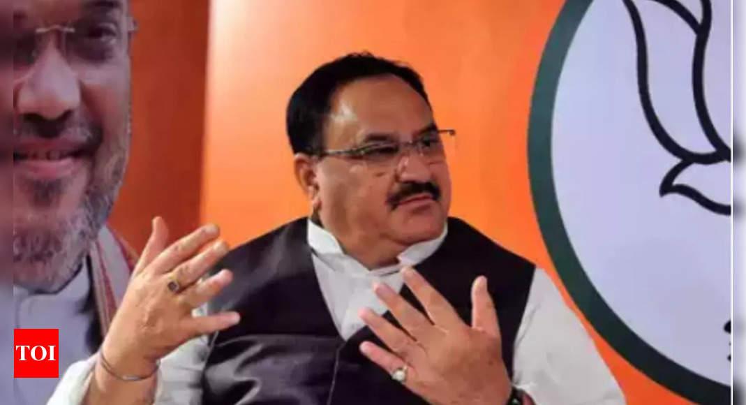 Opposition putting hurdles in development agenda: JP Nadda