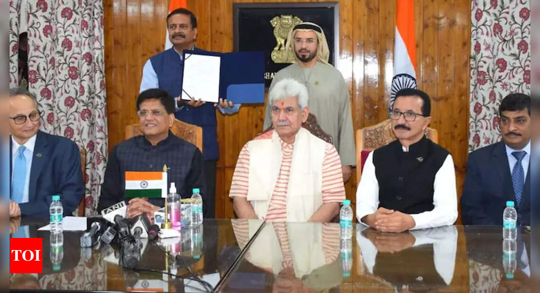 J&K government signs MoU with Dubai government