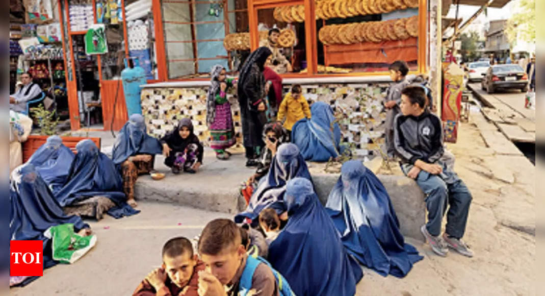 Afghanistan in food crisis, India plans to send 50,000MT of wheat