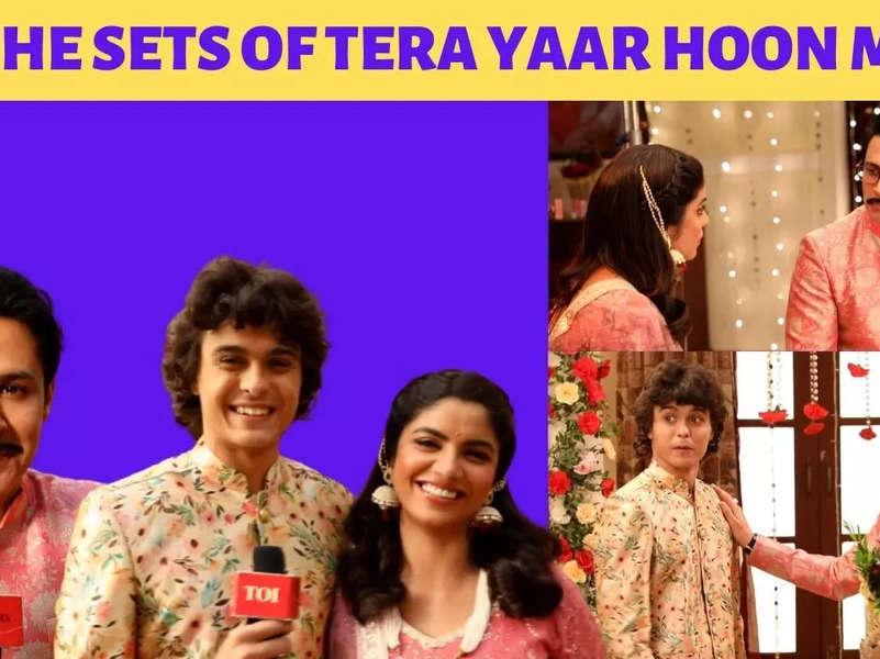 Tera Yaar Hoon Main: Sayantani Ghosh to convince Sudeep Sahir to be the donor for Mamta's child