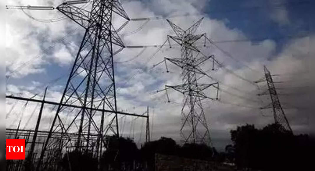 aipef:   Power engineers' body seeks capping of IPPs' profiteering | India News – Times of India