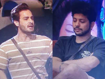 BB15: Umar Riaz calls Nishant Bhat a 'snake'