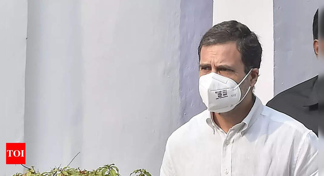 Modi surname case: Jharkhand high court says no coercive action against Rahul Gandhi till Dec 7