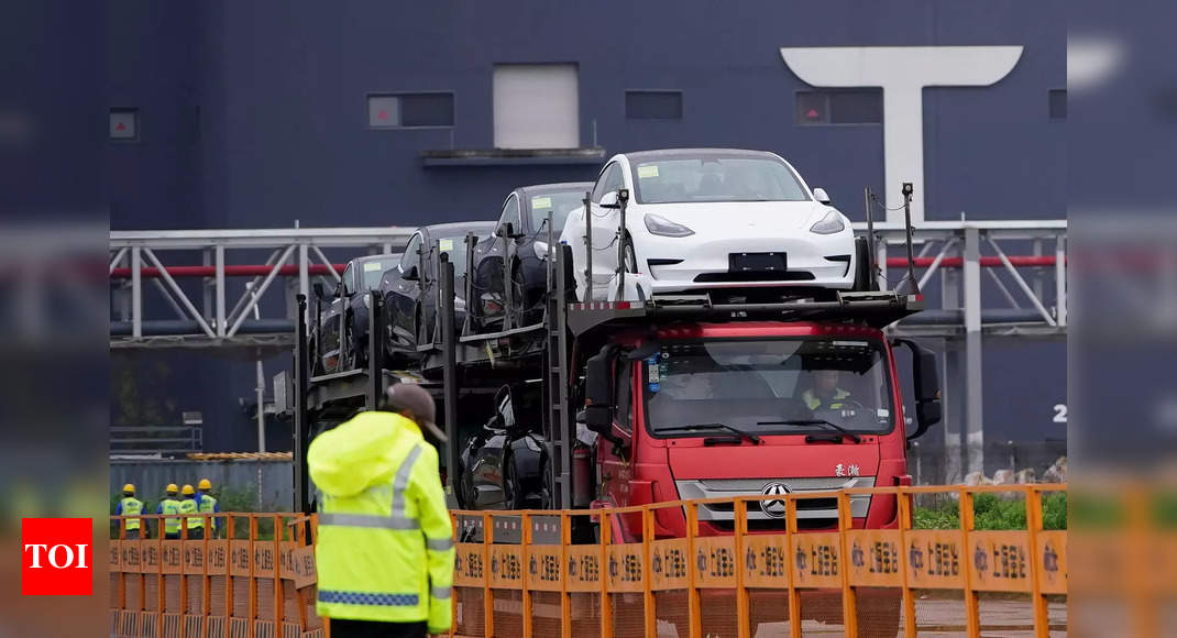 'Tesla urges PM's office to slash import taxes'