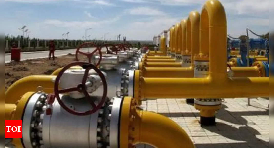 Top gas importer sees LNG price surge spurring long-term contracts