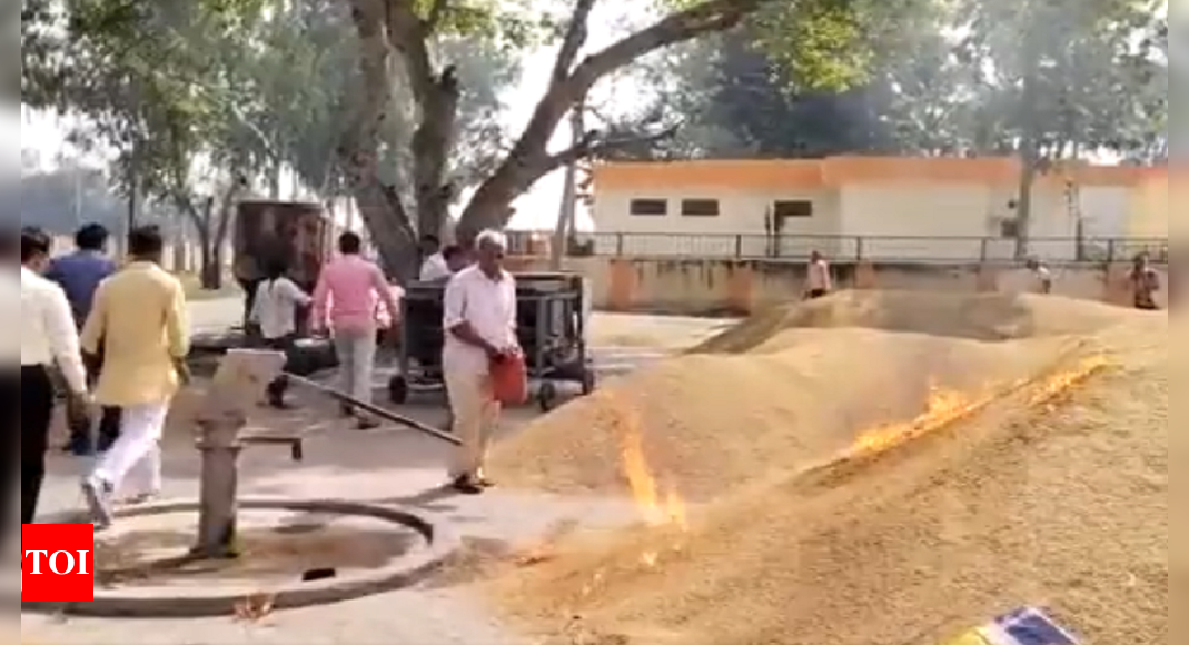 BJP MP Varun Gandhi shares video of a UP man setting fire to crop, seeks agri policy rethink