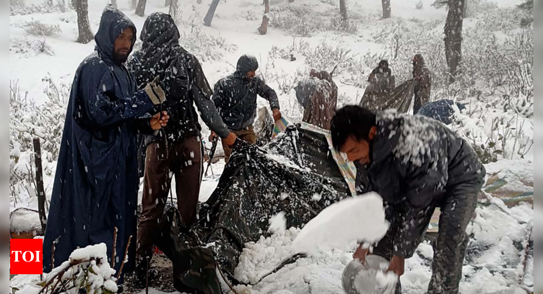 Three killed, apple orchards suffer extensive damage as snowfall, rains hit life in Kashmir