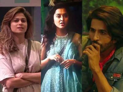 BB 15: Shamita, Vishal call Tejasswi 'fake'