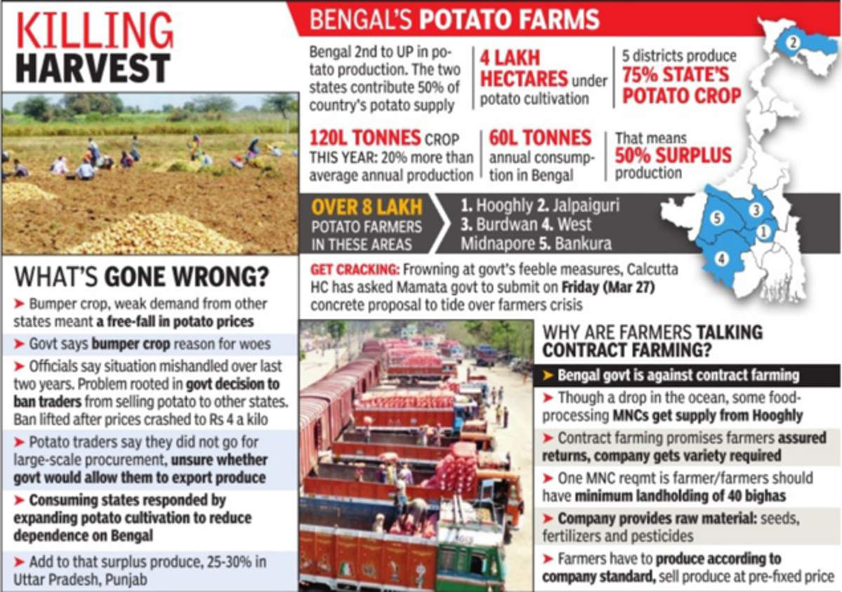 Potato glut and price slump drive 8 farmers to commit