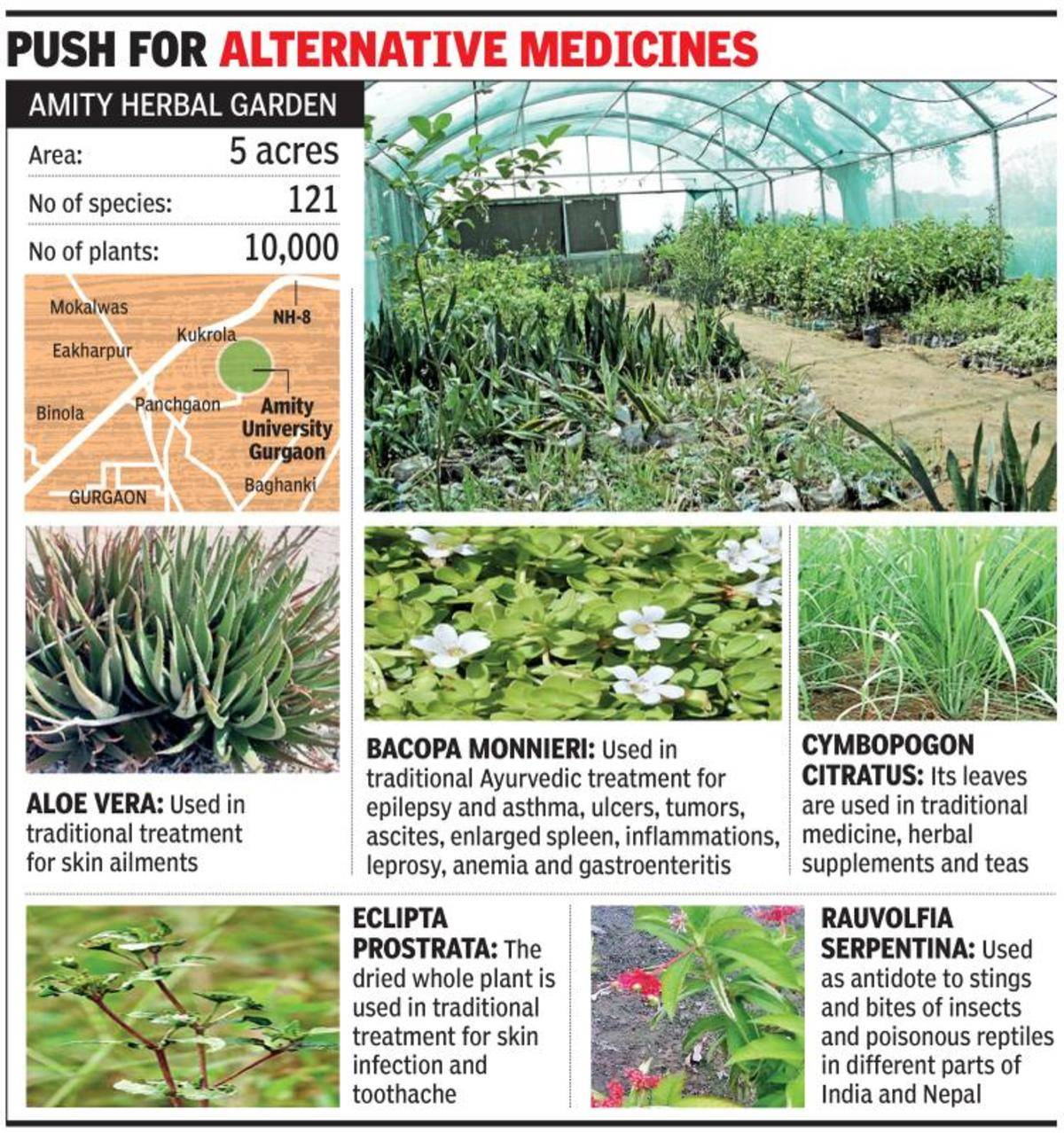 herbal garden: Herbal park opens in Gurugram, to give farmers tips