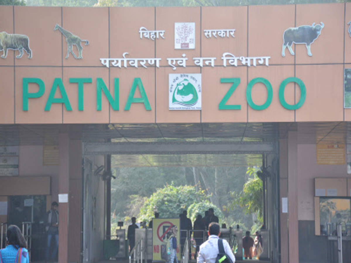 Zoo, Eco Park: Pay more than double on New Year | Patna News - Times