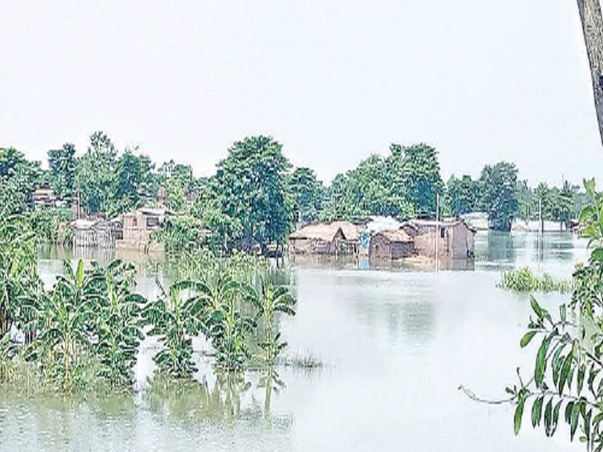 Flood toll in Bihar touches 92, Chiraiya BDO heckled | Patna News