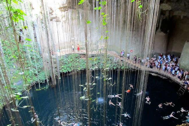 Cenotes of the Yucatán Peninsula of Mexico