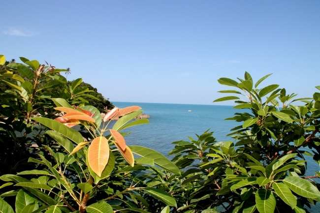 Voyage to an island paradise—Koh Samui