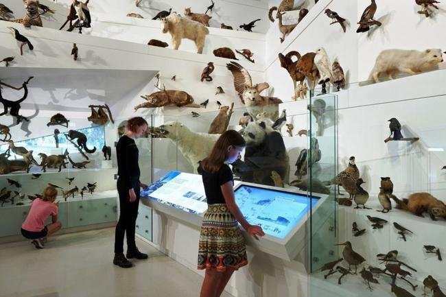 Melbourne Museum