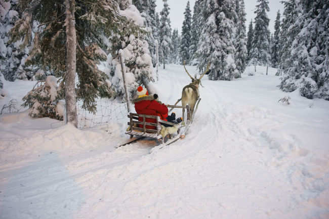 Santa on his sleigh, Finland