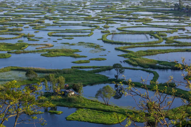 Image result for Loktak Lake, Manipur: