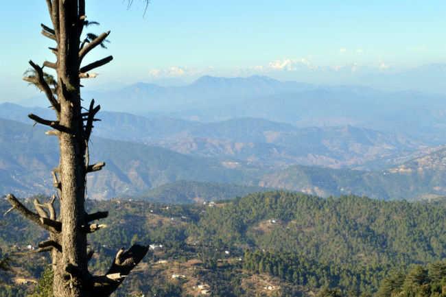 A quiet paradise near Nainital
