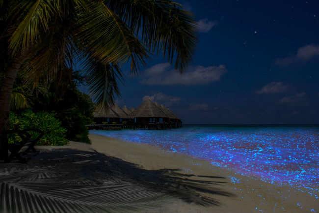 Vaadhoo Island, Maldives