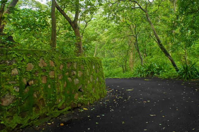 Mumbai-Goa road trip