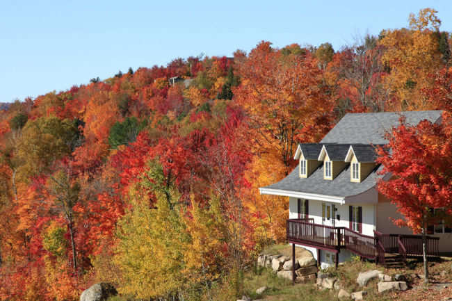 Perfect hill escapes from the Indian summer